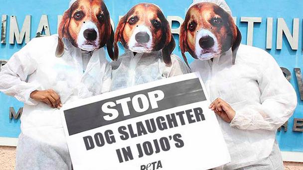 【検証】嘘?本当?世界的動物愛護団体PeTAが「ジョジョの奇妙な冒険」に抗議?のアイキャッチ