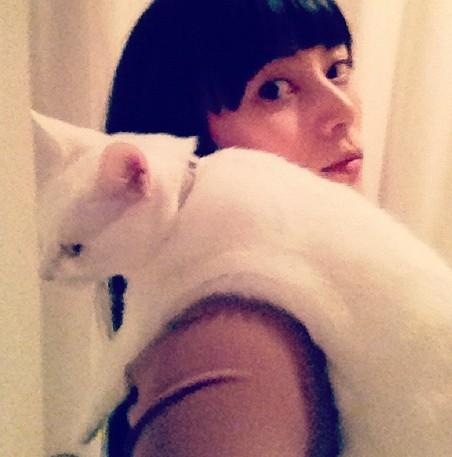 猫とシバサキコウ