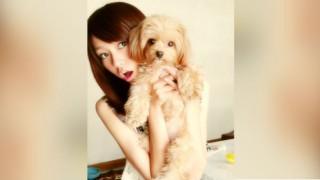 桐谷美玲と愛犬ぱとら