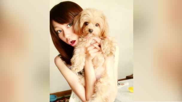 桐谷美玲とチワワ×トイプードルのミックス犬「ぱとら」が可愛いっ!♡のアイキャッチ