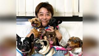 坂上忍さんという犬