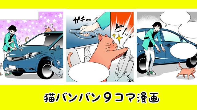 【続】猫バンバン!車を叩くことでネコが…【動物漫画】のアイキャッチ