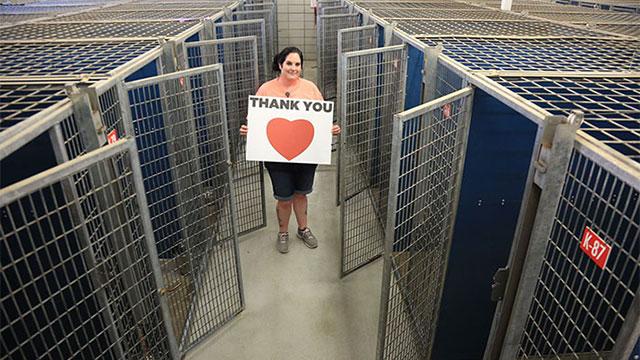45,000匹の犬猫に新しい家族が!保護施設がキレイさっぱり空っぽに!のアイキャッチ