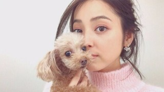 佐々木希とペットの愛犬