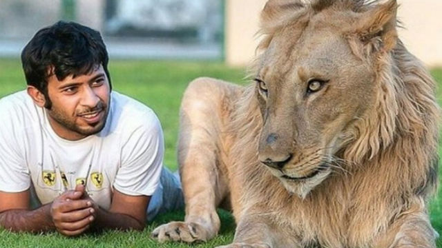 【野生動物の保護に貢献】アラブ首長国連邦で「珍しいペット」の所有を禁じる法律が可決!のアイキャッチ