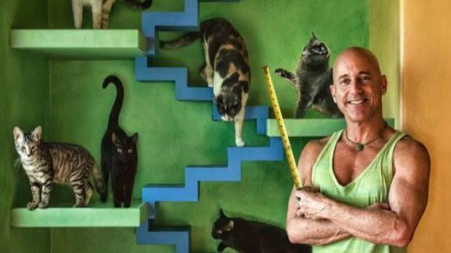 ネコに生涯を捧げる男性。ネコ専用パラダイス作りから治療法まで!のアイキャッチ