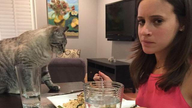 見届け続けて2年間…プロ目線で食卓を見守る猫と飼い主のオモシロ写真が話題に!のアイキャッチ