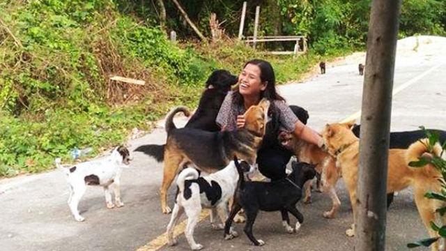 心温まる!ご飯を与えてくれる女性に毎日贈り物を持ってくる律儀な犬のアイキャッチ