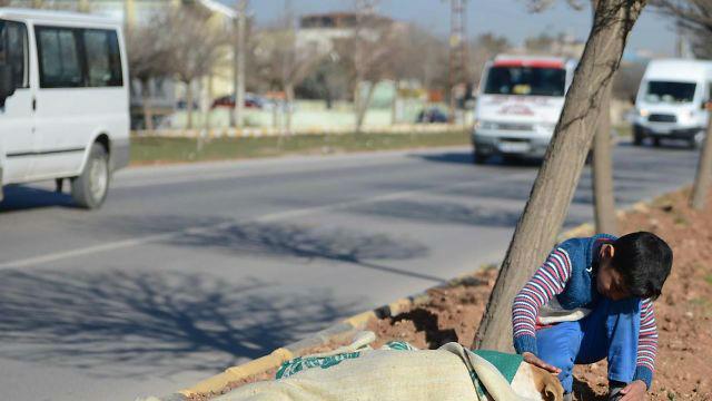 【感動】交通事故にあった犬にシリア難民の少年が示した人間性の素晴らしさとは?のアイキャッチ