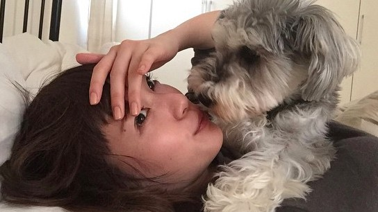 戸田恵梨香ちゃんとイヌ