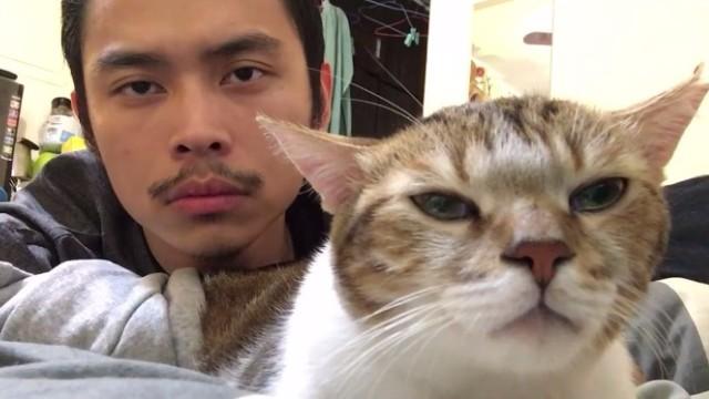 息のあったダンス猫と飼い主