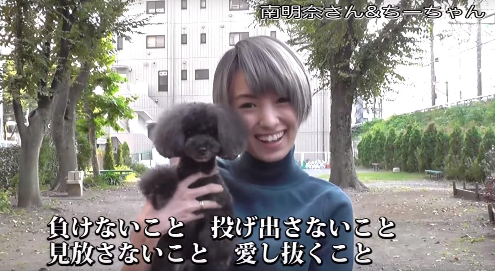 PR動画3