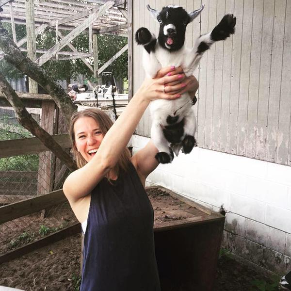 幸せに見える牛