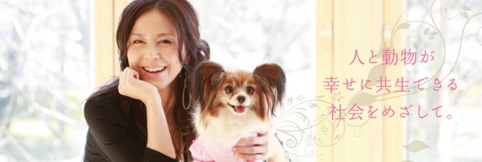 杉本綾と犬