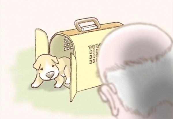 家に来る犬