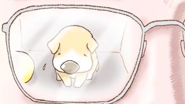悲しい犬を見る人