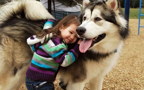 犬・猫のペットと成長する子供2