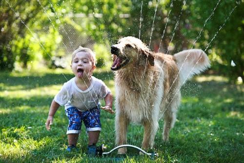 犬・猫のペットと成長する子供10