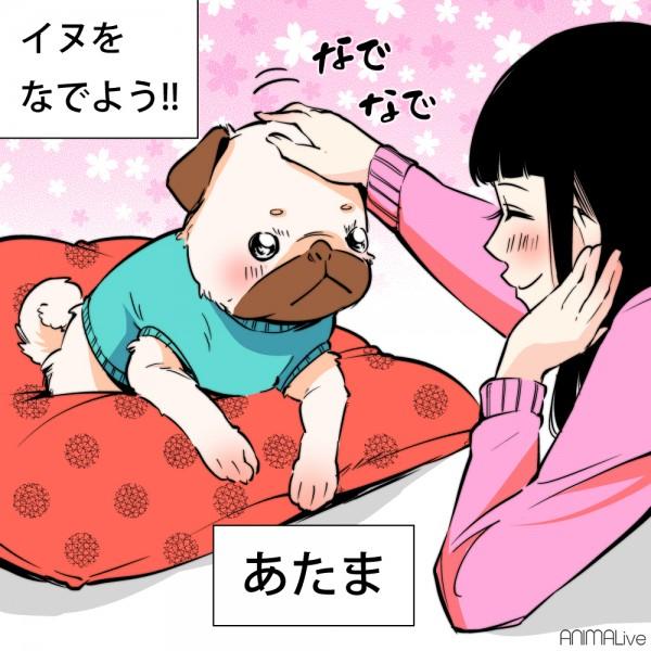 犬と猫を撫でる1
