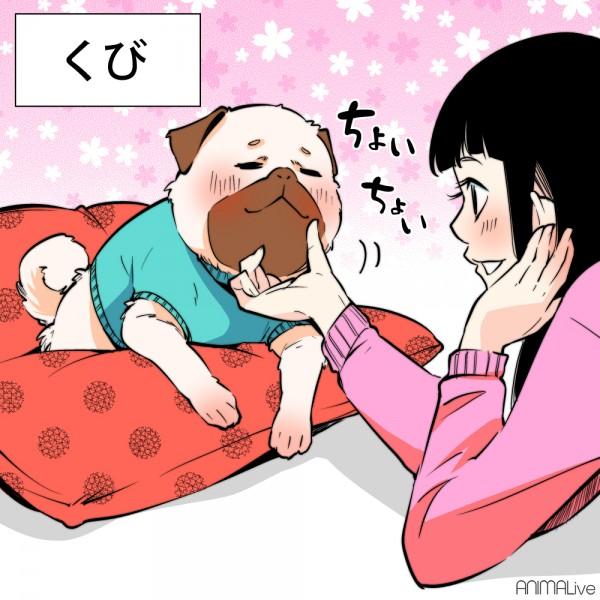 犬と猫を撫でる2