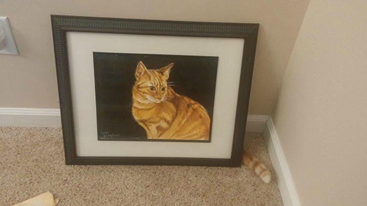 奇跡のタイミングの猫画像2