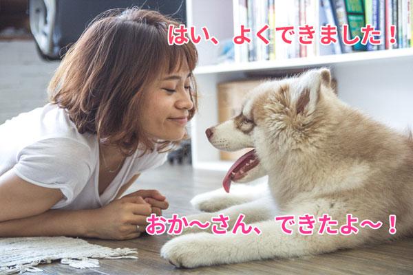,犬とお母さん