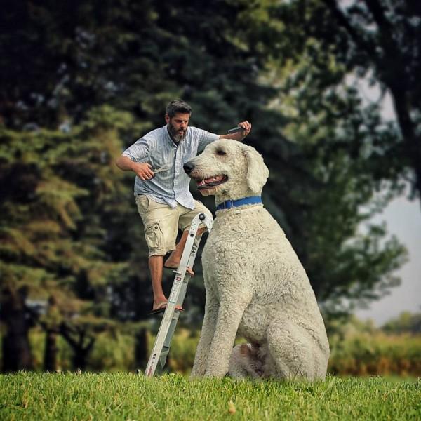 合成巨大犬と飼い主1