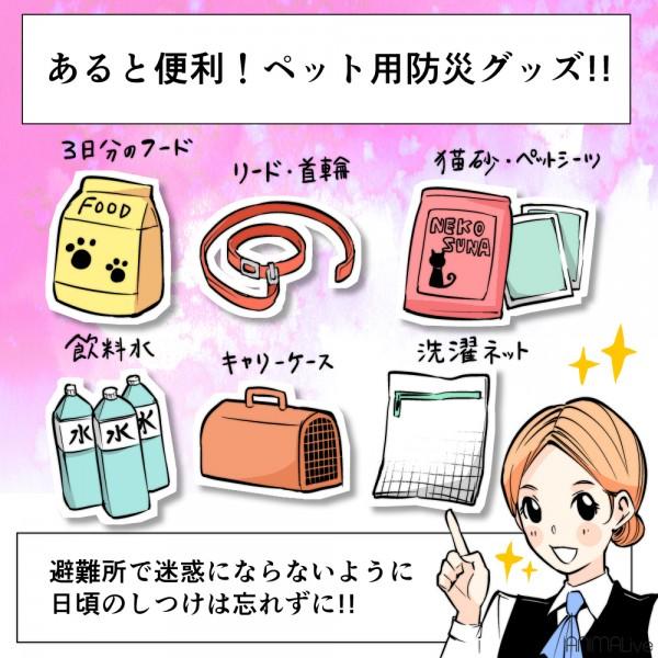 災害地震ペット対策4