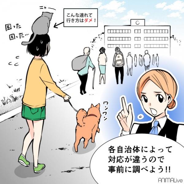 避難する犬と猫