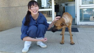 動物保護施設の女性
