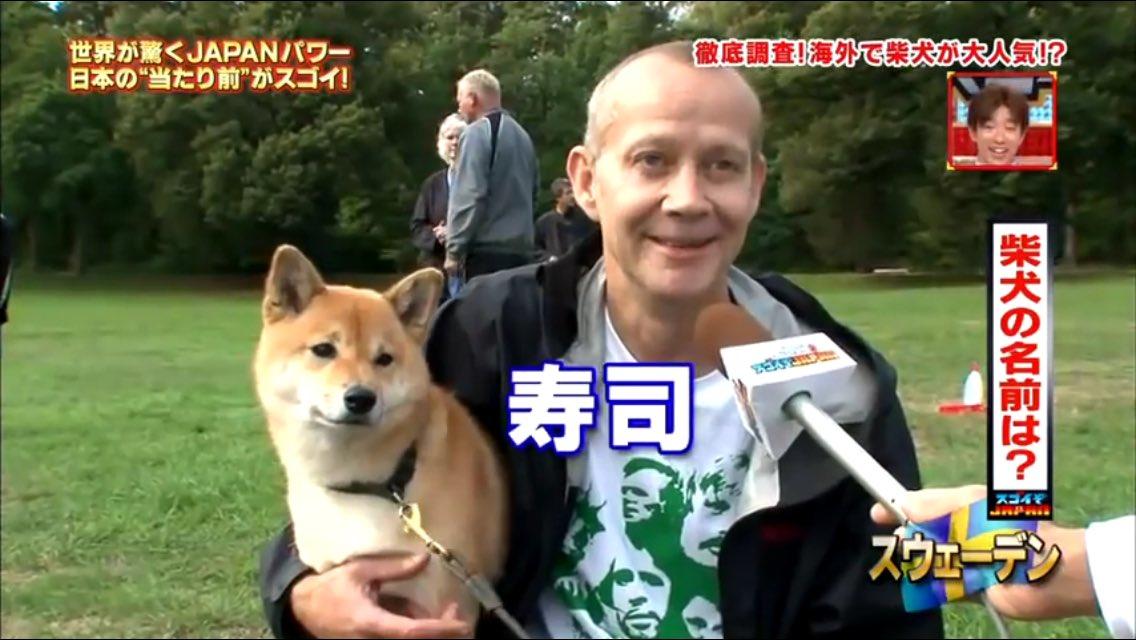 柴犬と外国人1