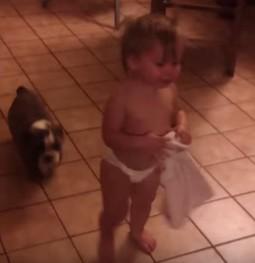 赤ちゃんと犬1