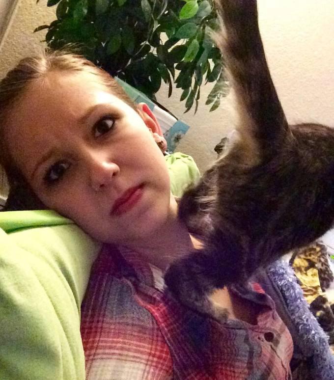 肛門を見せる猫