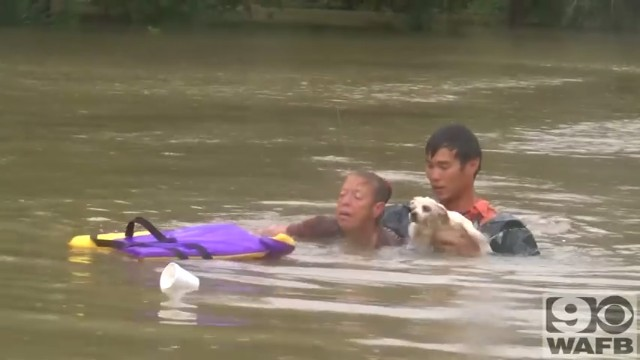 バトンルージュの洪水で犬と人間の救出6