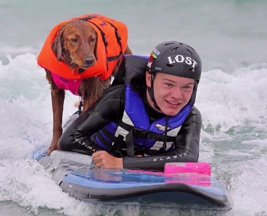 サーフィンをする犬2
