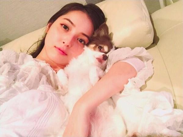佐々木希と愛犬マロン1