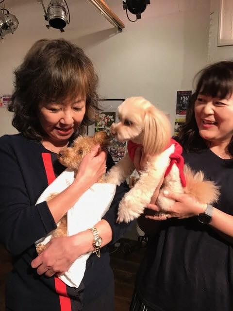 浅田美代子さんと犬2