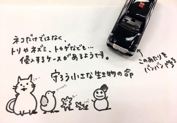 タクシー会社の猫バンバンイラスト4