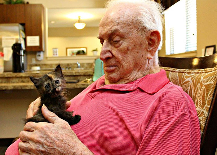 高齢者と保護猫3
