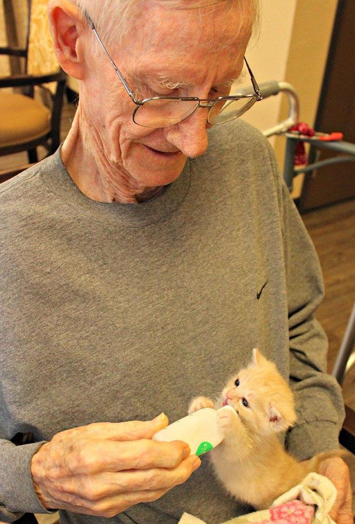高齢者と保護猫4