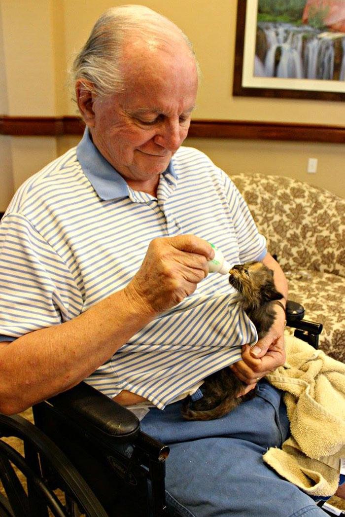 高齢者と保護猫5