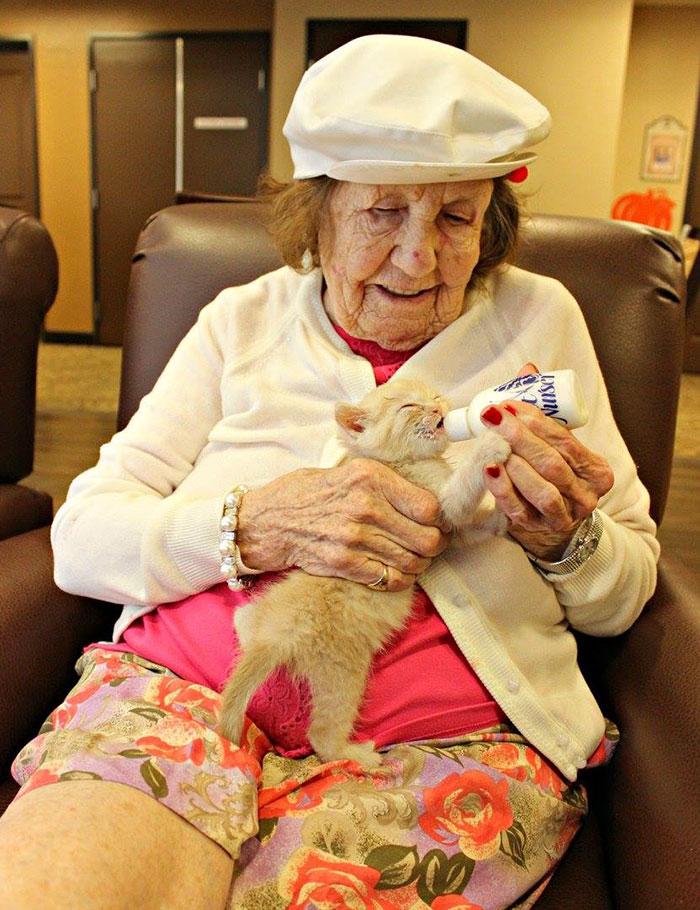 高齢者と保護猫6