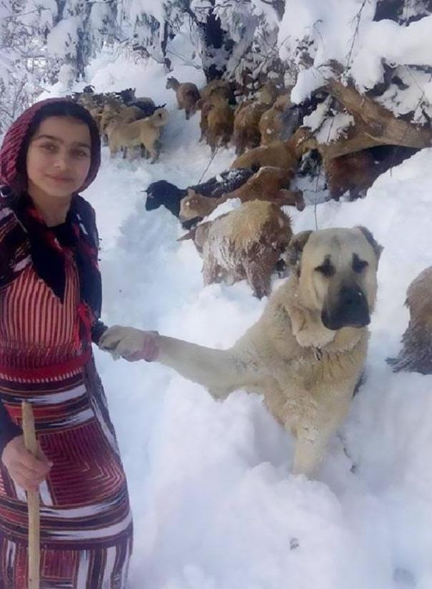 トルコの少女4