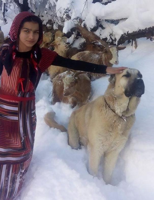 トルコの少女5